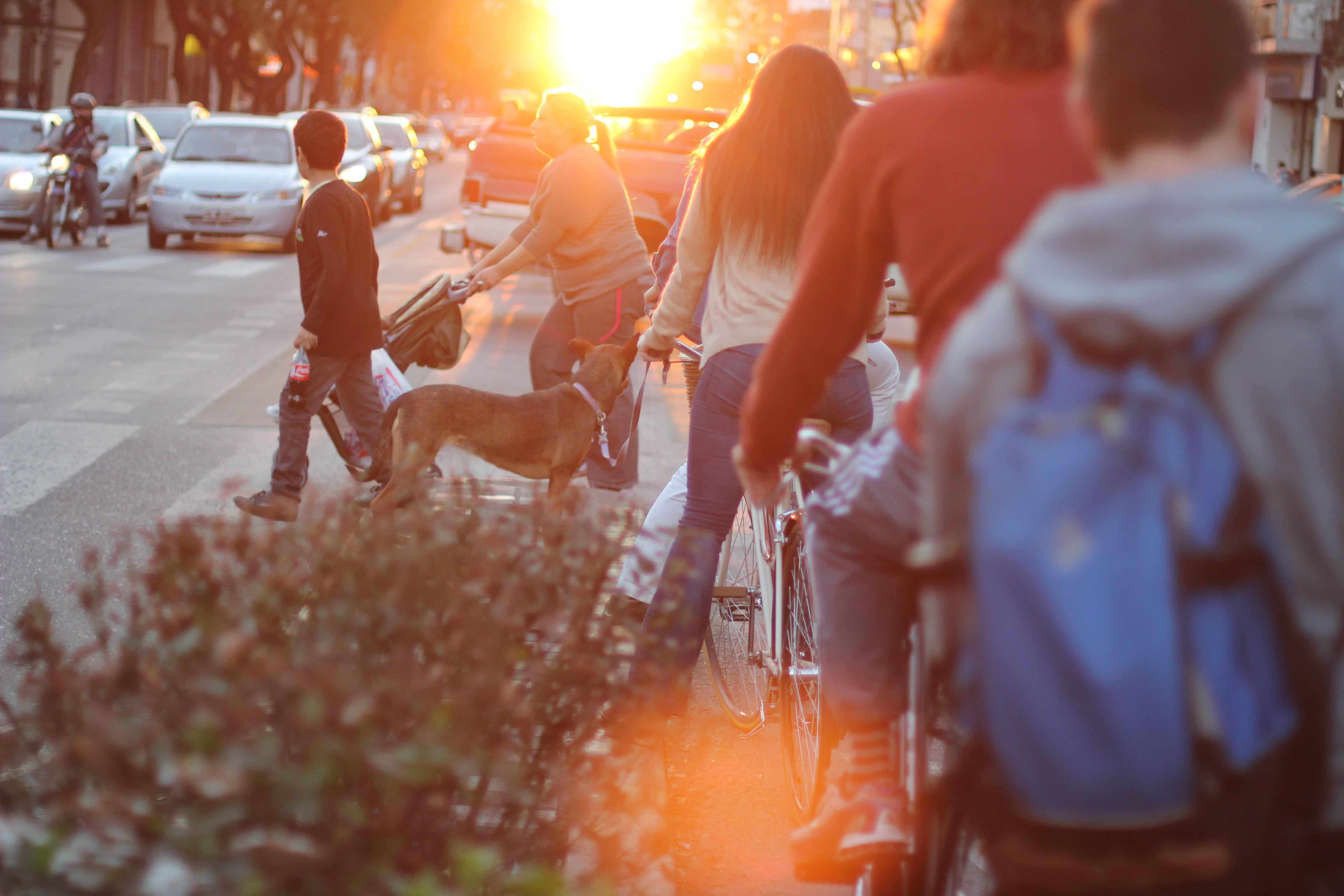Planificar y observar la movilidad de las ciudades